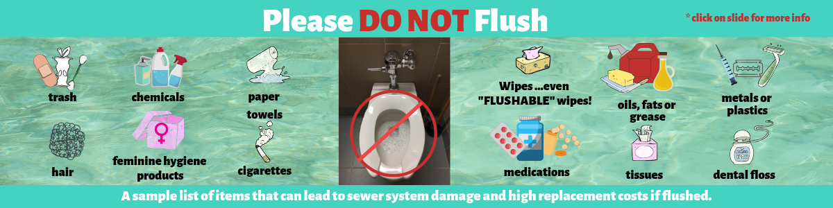 Please Do Not Flush