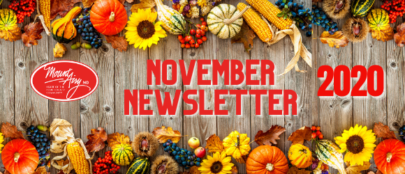 November Newsletter Header